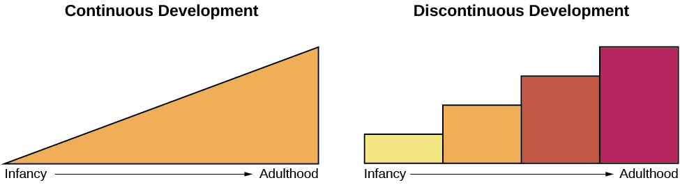 """Continuous and Discontinuous development are shown side by side using two separate pictures. The first picture is a triangle labeled """"Continuous Development"""" which slopes upward from Infancy to Adulthood in a straight line. The second picture is 4 bars side by side labeled """"Discontinuous Development"""" which get higher from Infancy to Adulthood. These bars resemble a staircase."""